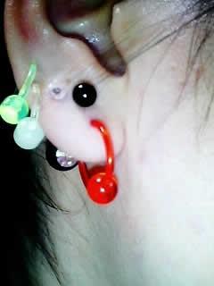 ばたふらいさんの右耳のボディピアス写真