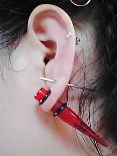 たぁ汰さんの左耳のボディピアス写真
